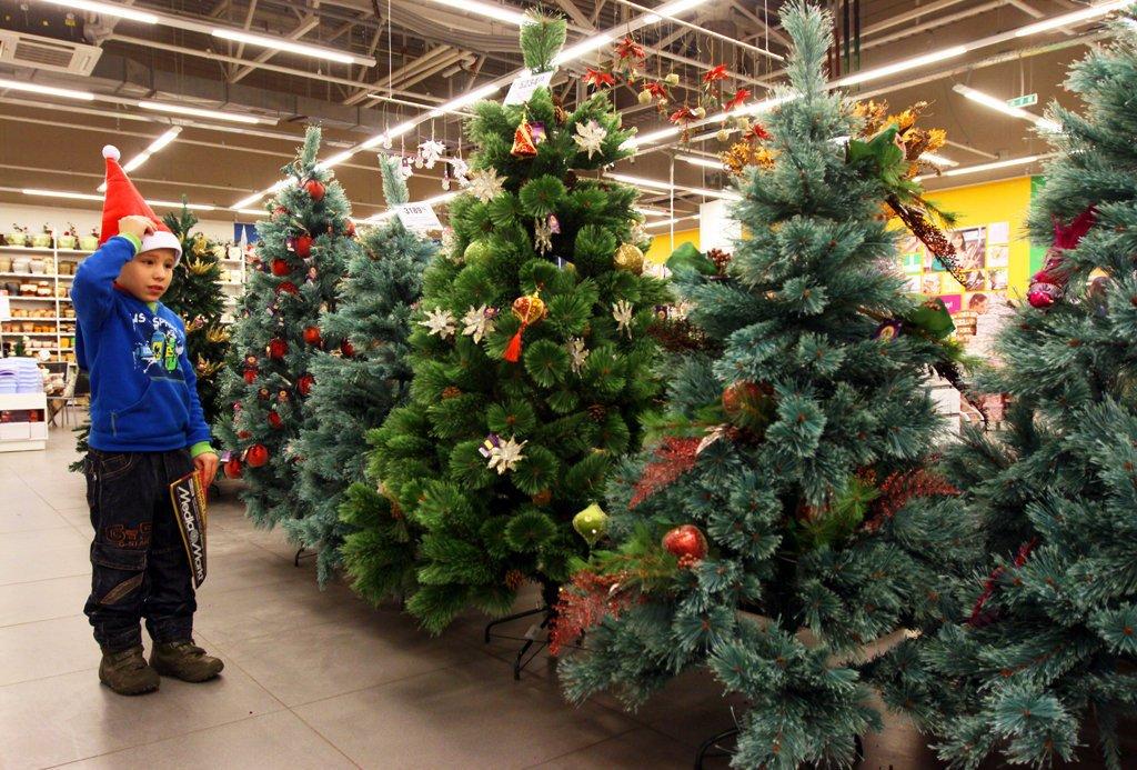 Какую елку приобрести на Новый год: искусственную или живую?