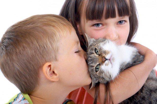 дети и кошка, отношение ребенка к животным