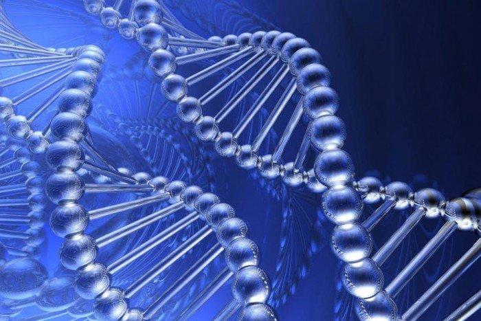 генная наследственность