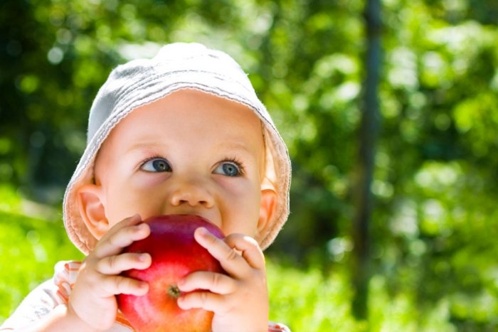 малыш в панамке кушает яблоко