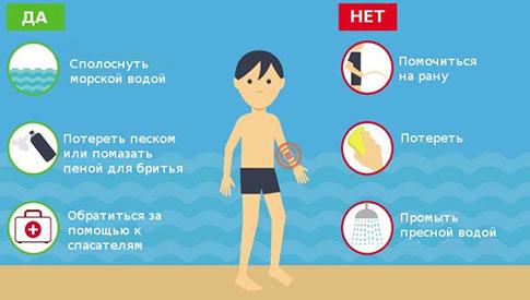 первая помощь при укусе медузы