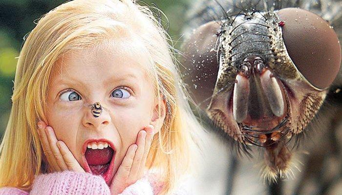 девочка боится насекомых