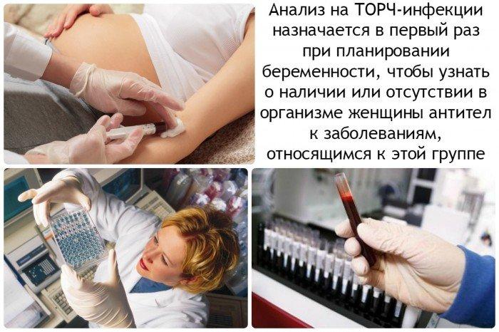 анализ на торч-инфекции назначается в первый раз при планировании беременности, чтобы узнать о наличии или отсутствии в организме женщины антител к заболеваниям, относящимся к этой группе