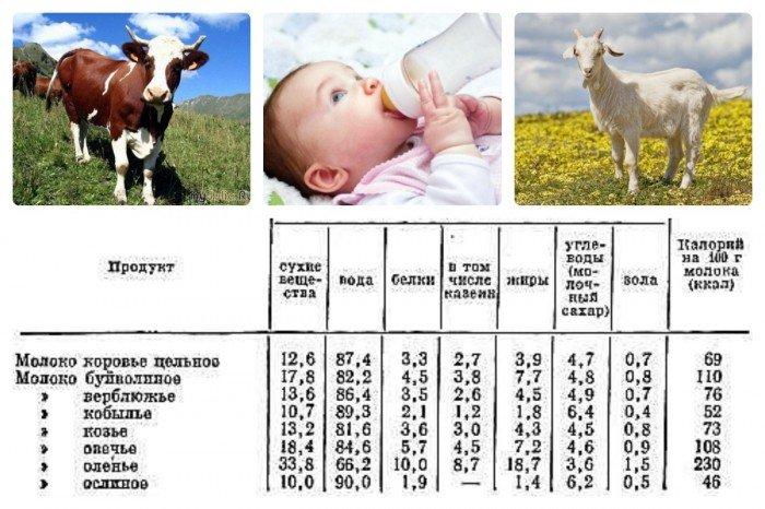 Молоко для грудничков (таблица 2)