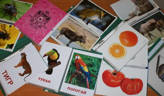 карточки домана, развитие ребенка