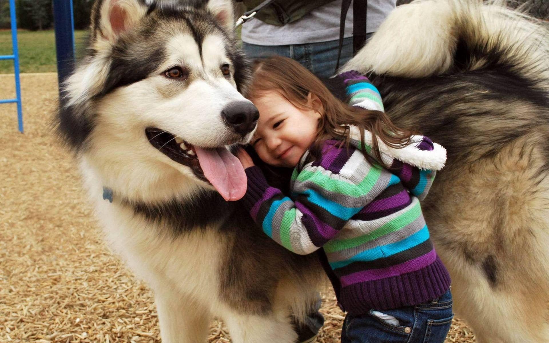 Домашние животные и маленький ребенок.