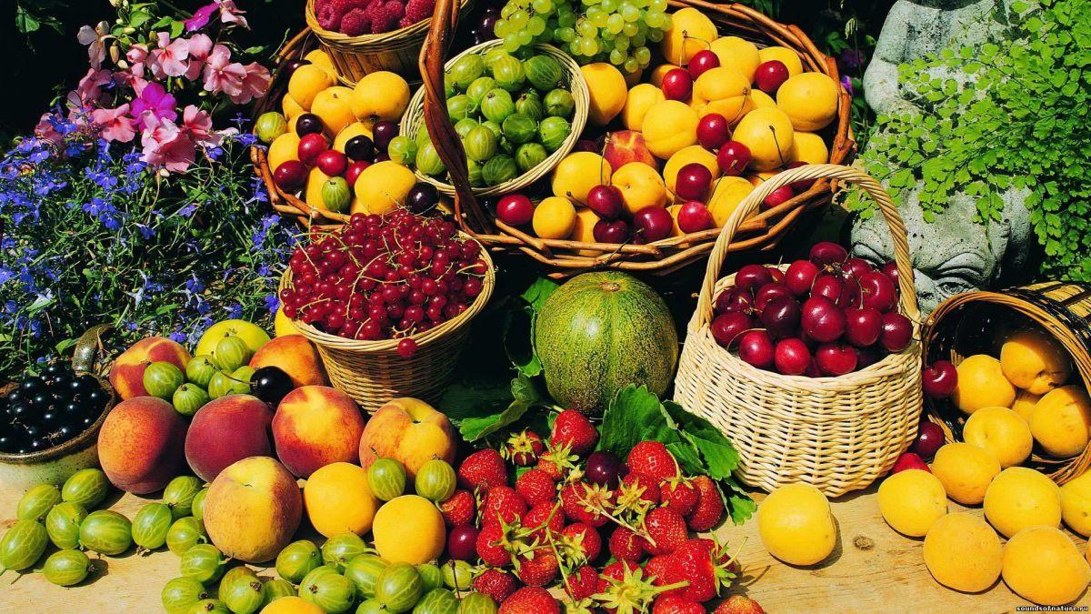 Самые полезные весенние продукты для женщин в положении.