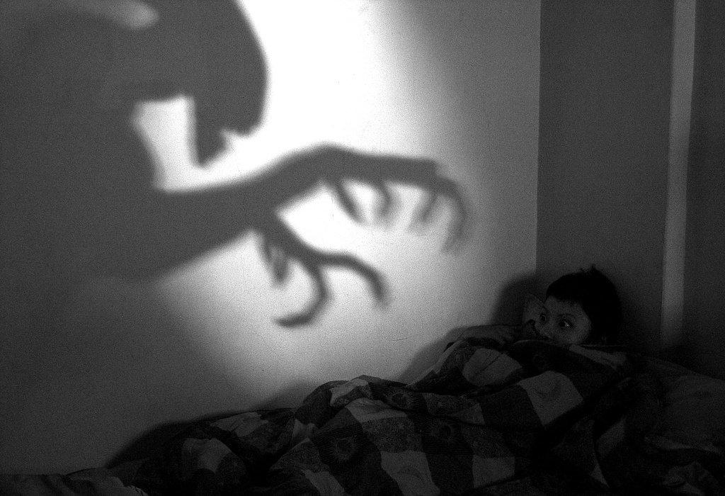 Галлюцинации у детей.