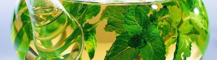 Успокаивающие травы для беременных