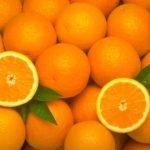 апельсин обыкновенный