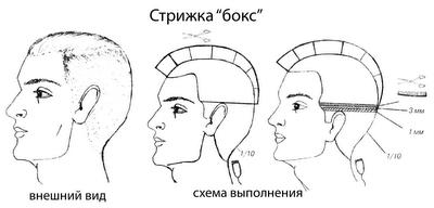 Схема «Бокса»