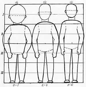 Соотношение пропорций головы и тела