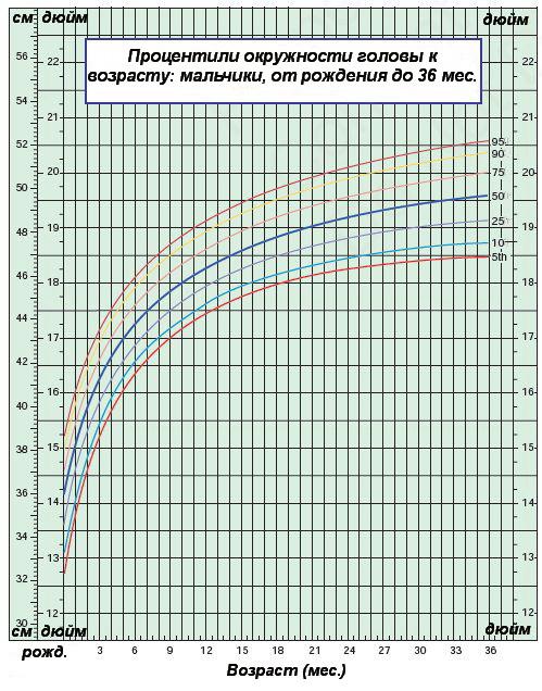 Процентили окружности головы к возрасту — мальчики от 0 до 36 месяцев