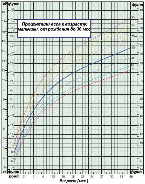 Процентили веса к возрасту — мальчики до 36 месяцев