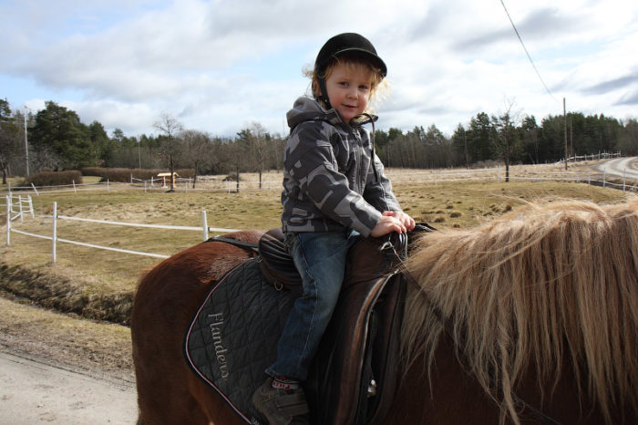 Мальчик на лошади