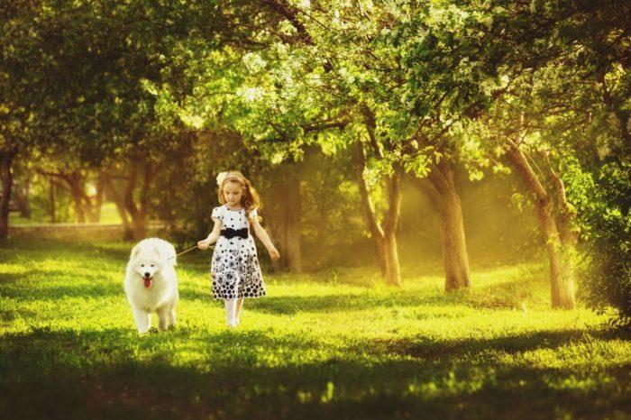 Девочка гуляет с собакой