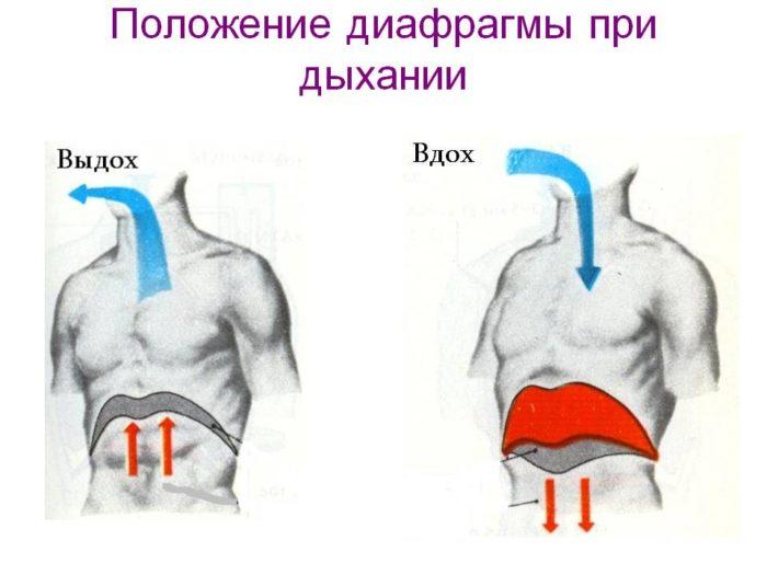 диафрагмальное дыхание, которое помогает убрать живот после кесарева