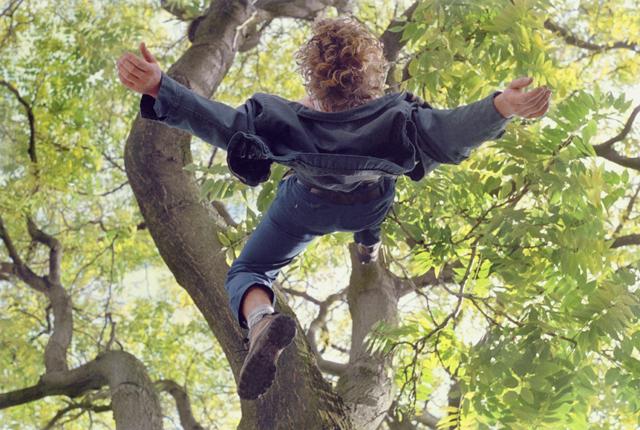Ребёнок падает с дерева