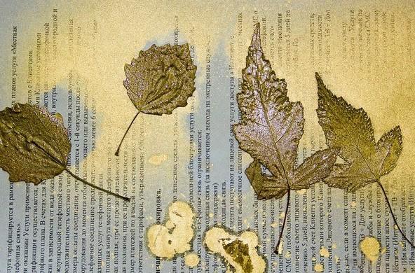 Листья деревьев, окрашенные золотой краской, лежат на бумаге