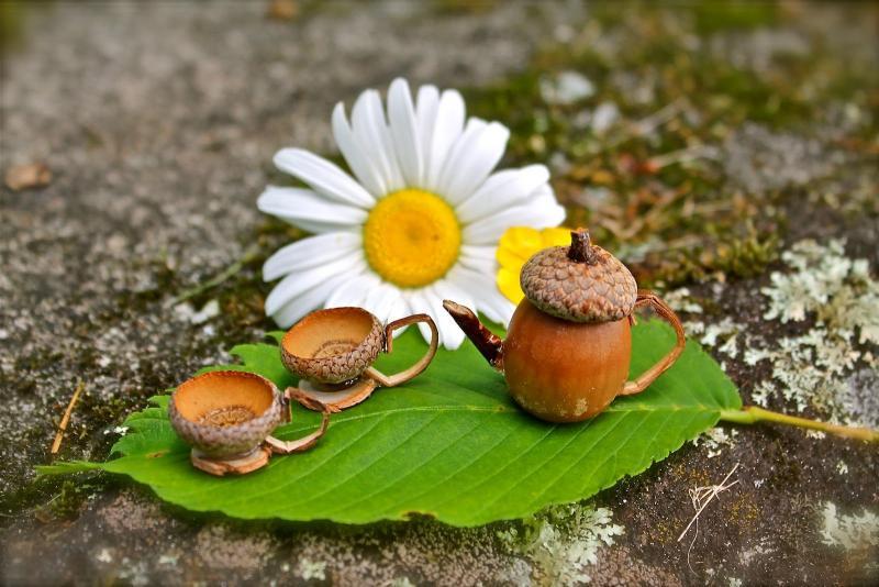 Осенние поделки из природных материалов: делаем для детского сада своими руками