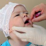 Ребёнку закапывают в рот оральную полиомиелитную вакцину