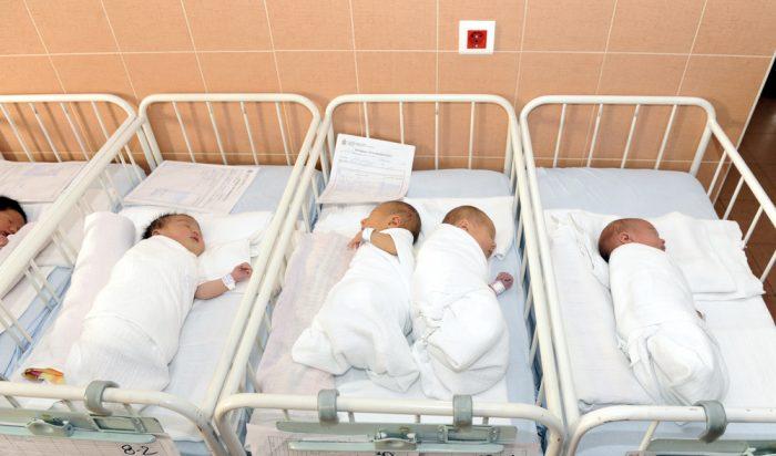 Новорождённые спят в кроватках в роддоме