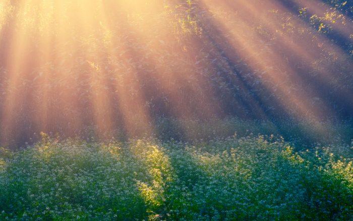 Лучи солнца, освещающие землю