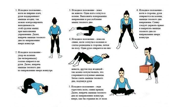 Упражнения кегеля для укрепления сексуальных мышц