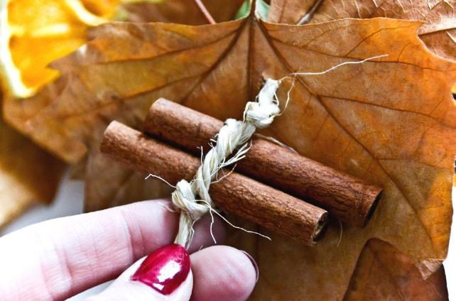 Две палочки корицы, обёрнутые верёвкой