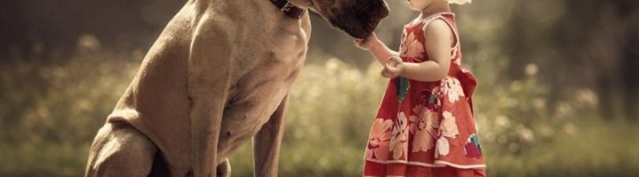 Маленькая девочка в платье и шляпке стоит рядом с большой собакой