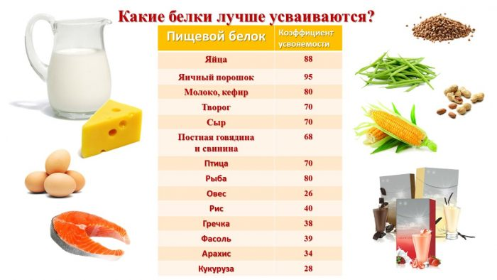 продукты, таблица коэффициентов усвояемости белка