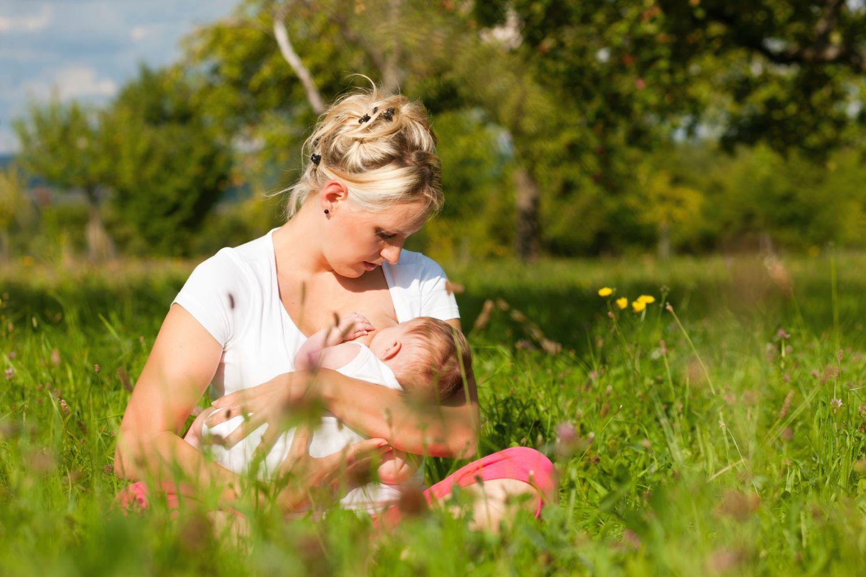Огурцы при грудном вскармливании: мифы и реальность