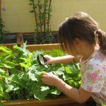 Девочка через лупу рассматривает растения