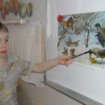 Мальчик показывает каранадашом на птицу, изображённую на картине