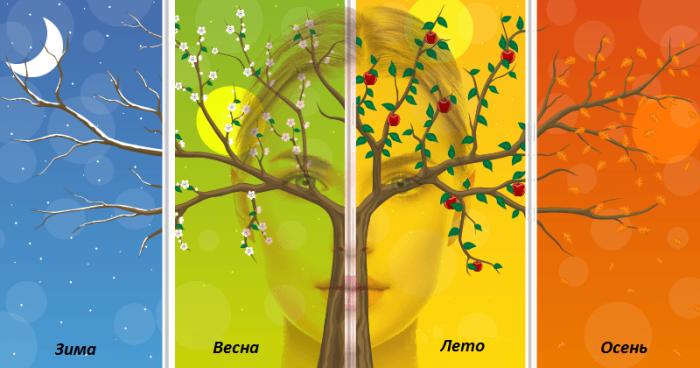 Схематическое изображение времён года в виде дерева на разном фоне, позади него размытое изображение женского лица
