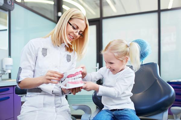 Стоматолог показывает девочке макет челюсти