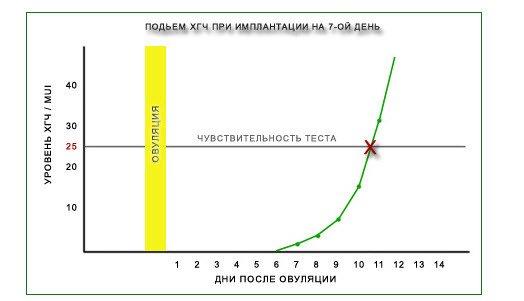 Изменение уровня ХГЧ в моче