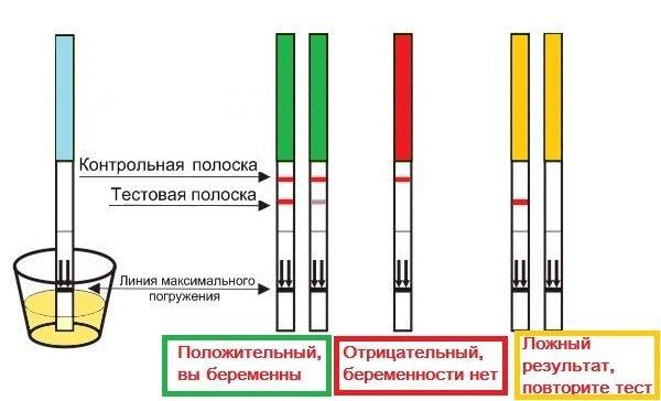 Оценка результата теста на беременность при использовании тест-полосок