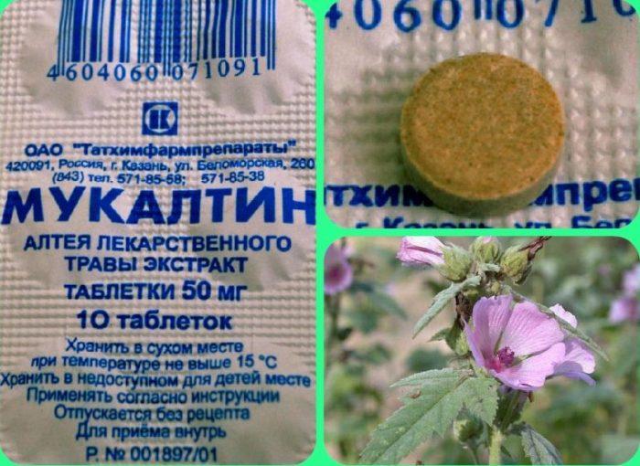 лекарственное растение алтей, упаковка и таблетка мукалтина