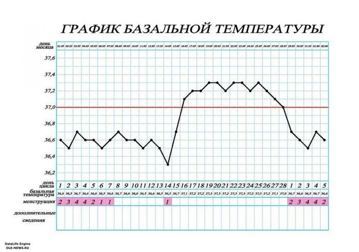 график базальной температуры