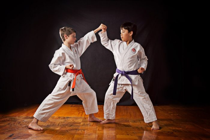Два мальчика в белых кимоно стоят босиком на паркете в стойке, вытянув руки в технике карате