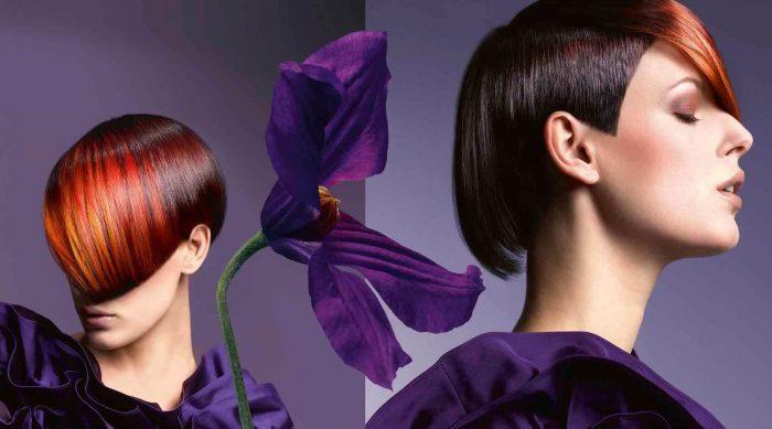 Волосы, окрашенные парикмахером колористом