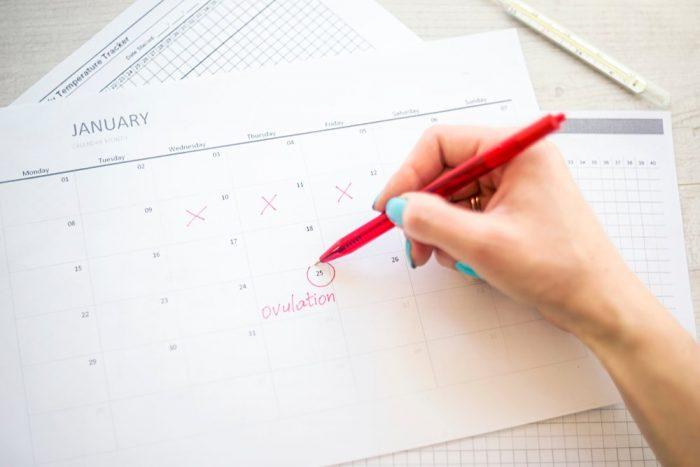 Женщина отмечает в календаре овуляцию