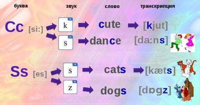 Варианты звукового соответствия букв C и S в агнлийском языке