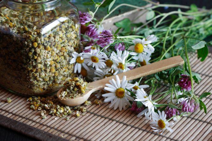 травы на столе