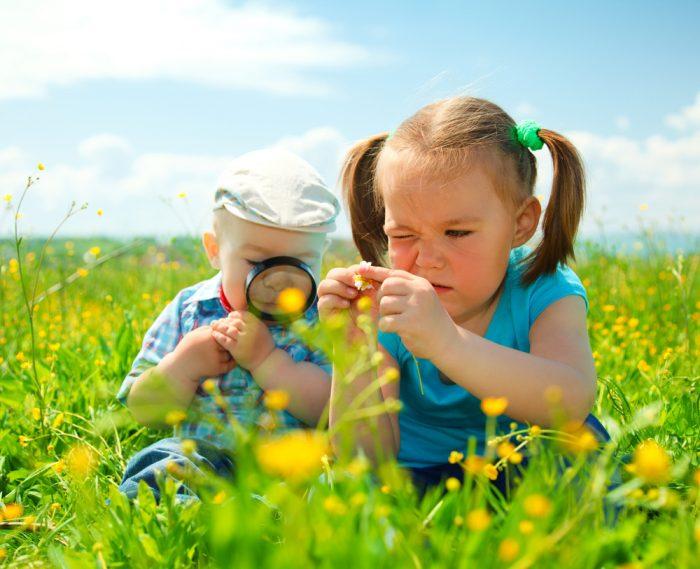 Девочка и мальчик рассматривают цветы в поле