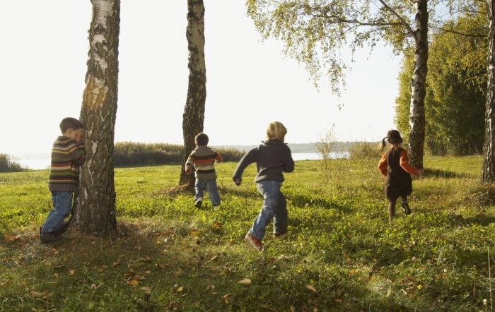 Дети играют в лесу в прятки