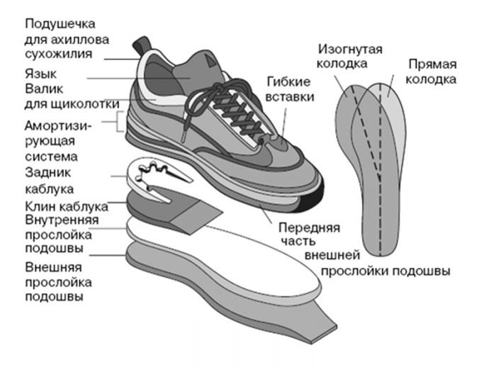 Ортопедический кроссовок с обозначением частей обуви