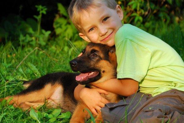 Мальчик обнимает щенка, сидя на траве