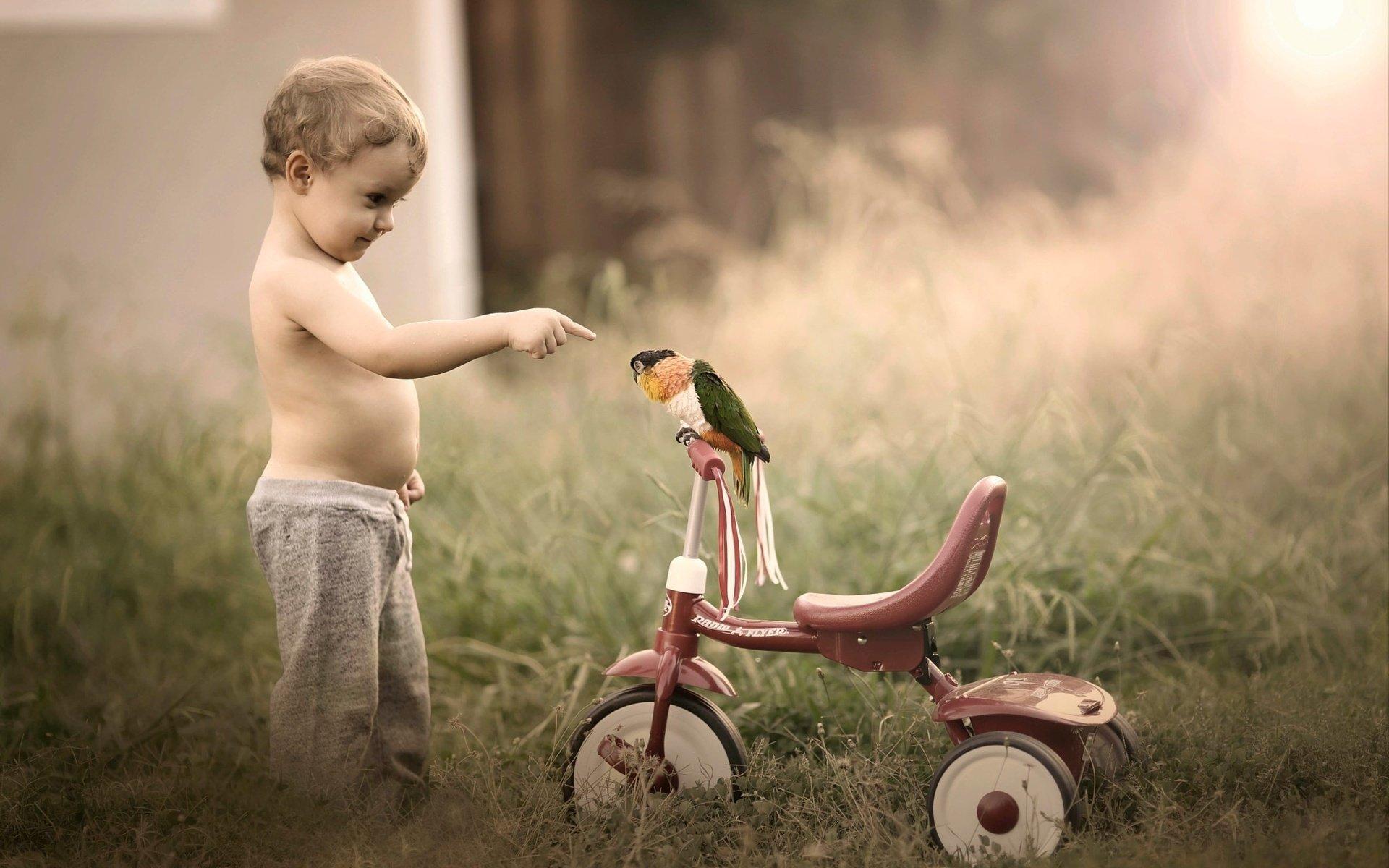 13 причин не покупать велосипед ребёнку на 1 год